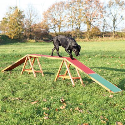 trixie dog activity agility steg g nstig kaufen bei zooplus. Black Bedroom Furniture Sets. Home Design Ideas
