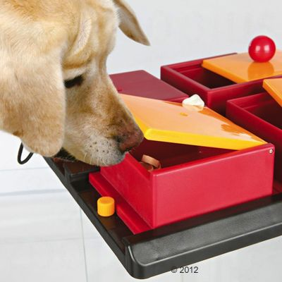 Trixie Hundespielzeug Dog Activity Poker Box