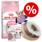 Welcome Kit Kitten Royal Canin