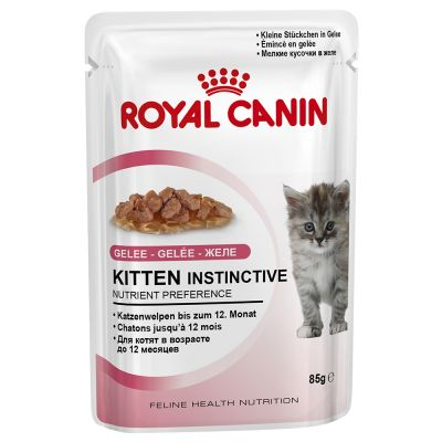 Welcome Kit Kitten Royal Canin Maine Coon