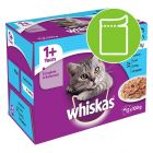 Whiskas 1+ Fish Selection in Jelly
