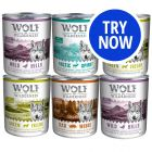 Wolf of Wilderness Mixed Pack - 4 varieties