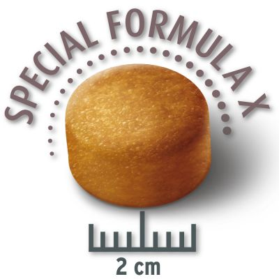 5 x 80 g = 400 g Probiergröße Concept for Life Trockennahrung
